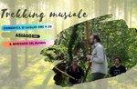 MusikalischeS Trekking im Col dei Remi- Sonntag, 21. Juli 2019