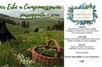 Andar per Erbe a Campomezzavia- Sabato 18 Maggio 2019