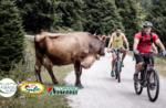Tour der Malghe im E-Bike - Freitag, 4. September 2020