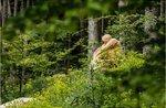 Selvart, Kunst-Naturpark. 4444 Wasser und Feuer-Sonntag 01 Oktober 2017