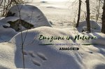Emotionen in der Natur: Fußabdrücke und Spuren-Sonntag, 16. Dezember 2018