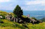 Kriegspfaden: Mount Zovetto, geführte, Samstag, 29. Juli 2017