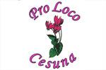"""Rassegna """"I giovedì della cultura"""" a Cesuna di Roana Giovedì 4 settembre 2014"""