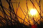 Warten auf die Morgendämmerung Strong gestoppt mit Lesungen von Isaac Talley, Asiago