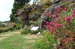 Besuch und Workshop im Alpinen Botanischen Garten von M. Horn-29 August 2018