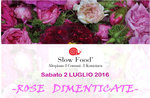 ROSE-FORGET-alte rose Tag-Asiago-2. Juli 2016