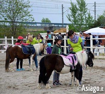 Roana a cavallo scuola pony per bambini laghetto di for Animali per laghetto