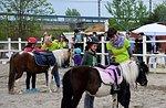 Roan Pferd, Ponys für Kinder Schule, Roana, Teich Altopiano di Asiago