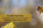 Bauernhofausflug Bildung zwischen Kräutern und Bienen durch das Naturalistic Museum of Asiago - 11. Oktober 2020