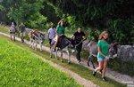Der Dakar-Esel - Familienaktivitäten mit Eseln im Wunderfall - 29. august 2020