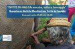 ALL IN MALGA - Familienaktivitäten in madagassischer Milch, Kühen und Käse - 6. September 2020