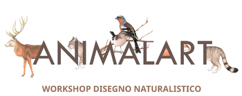 Animalart - Workshop di disegno
