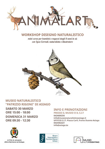 Animalart asiago 2019