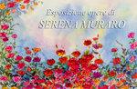 Esposizione opere di Serena Muraro alla Chiesa San Rocco, Asiago, 21 agosto 2016