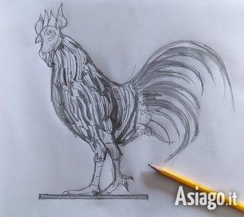 il gallo di vaia