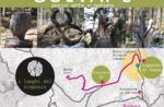 4. SelvArt Symposium - Natural Art Symposium auf dem Asiago Plateau - 23.-28. Juli 2019