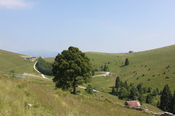 Enego, Asiago Guide