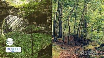 escursione stonhaus mezzaselva asiago guide