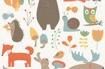"""""""Gli animali del bosco... dipingo, creo, conosco!"""", laboratorio per bambini al Museo Naturalistico di Asiago - 8 agosto 2017"""