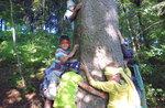 """""""Auf der Suche nach den schätzen des Waldes mit GNOME Mint"""" al Cason Wunderland, 16. Juli 2017"""