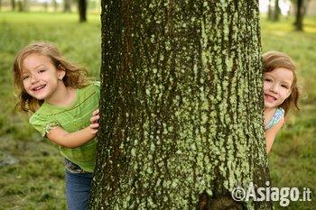 bambini nel bosco ad asiago