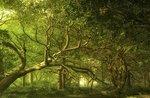 """""""Der Hüter des verzauberten Waldes"""" - Kreativworkshop im Prunno von Asiago - 15. Juli 2019"""