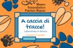 """""""CACCIA ALLA TRACCIA! - Laboratorio per bambini ad Asiago - 23 agosto 2018"""