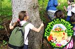 Kinder-Kunst-Therapie mit Natur Cason Wonderland Treschè 08/30 Conca