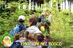 """""""EMOZIONI NEL BOSCO"""" - Passeggiata per bambini con il Cason delle Meraviglie - 2 giugno 2018"""