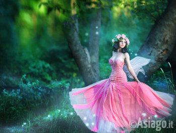 fata nel bosco incantato