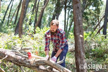 di woodman