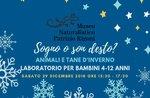 "Naturalistische Workshop-kreative ""Sogno o Sohn Desto? Tier-Heime ""in Asiago-29 Dezember 2018"