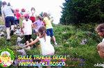 """""""Auf den Spuren der Wald Tiere""""-Aktivitäten für Kinder mit Tieren al Cason Wunder-31 August 2018"""