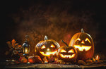 Halloween im Patrizio Rigoni Naturalistic Museum - 31. Oktober 2019