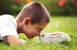 AnimaliAmo - Bauernhof mit Tieren im Wunderfall - 6. September 2020