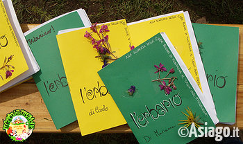 cason delle meraviglie erbe buone di montagna 1