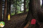 """""""Der Wald der Emotionen"""" - Kinderaktivitäten im Wunderfall - 2. August 2020"""