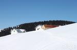 Schneeschuh-Wandern auf Mount Val Marie mit Asiago Guide, 12. Februar 2017