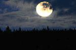Mondschein-Nachtwanderung mit Asiago Hochebene von Asiago, 18. Februar 2017