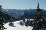 Escursione sulla neve e pranzo al Rifugio Bar Alpino, Altopiano di Asiago 2016
