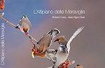 Das Plateau der Wunder, Dokumentarfilm auf der Hochebene von Asiago, Erio Baito