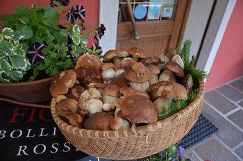 cesto di funghi