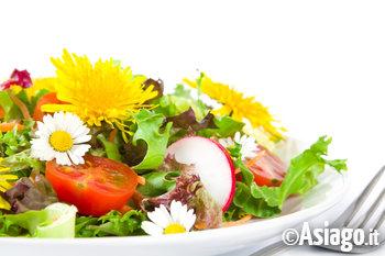 insalata con tarassaco