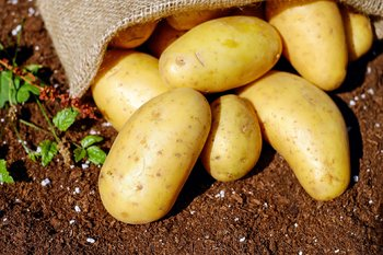 Patate in sacco