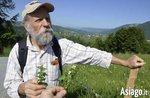Escursione guidata a scoprire le erbe dell