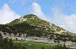 """Escursione """"La prima linea Austriaca, fuori dai soliti sentieri"""" - Asiago Guide"""