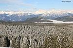 Schneeschuhwanderung Verena Fürsten der Guide PLATEAU Plateau, 22. Marz 2014