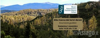 escursione larici museo naturalistico