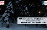 """""""MILLUMINO OF MENO: THE LUCE IN BOSCO"""" - Aperitif und Exkursion mit Asiago Naturalistic Museum - 6. März 2020"""