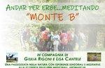 """ANDAR FOR ERBE MEDITANDO""- Asiago Plateau Exkursion mit Giulia Rigoni und Lisa Cantele - 13. Juli 2019"